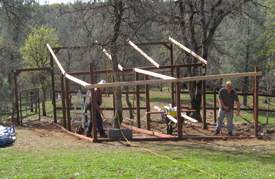 Chicken Coop Under Construction
